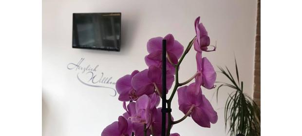 axa osnabr ck florian flatau unsere agentur axa. Black Bedroom Furniture Sets. Home Design Ideas
